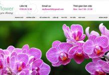 Top 10 shop bán hoa tươi uy tín nhất tại TPHCM 2021