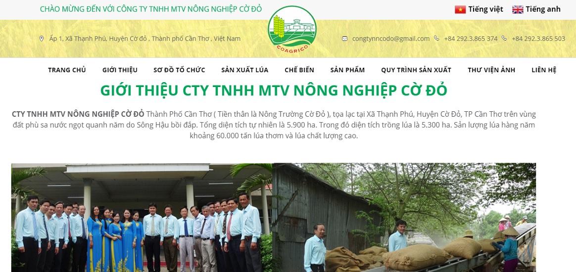 Công ty xuất nhập khẩu nông sản Cờ Đỏ.