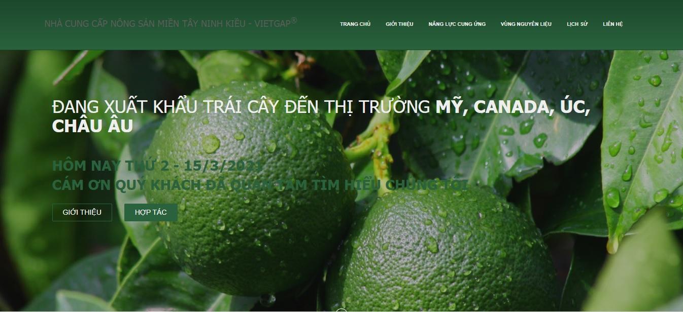 Công ty xuất nhập khẩu nông sản Ninh Kiều.