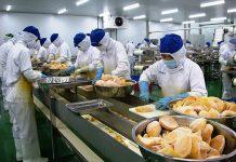 Công ty xuất nhập khẩu nông sản uy tín ở Đà Lạt