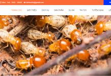 Công ty diệt mối côn trùng Đà Nẵng